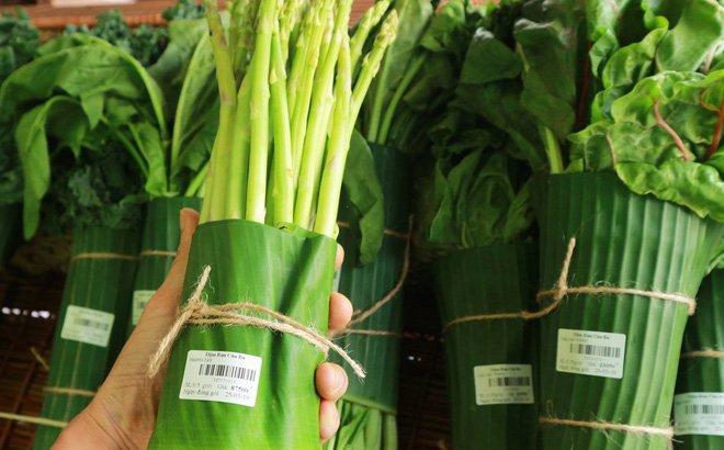 các loại bao bì thực vật